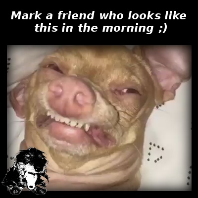 Mark a friend who looks like this in the morning